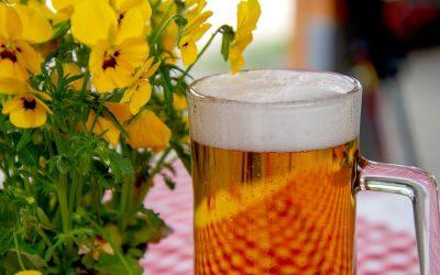 Beer-Rally-Vienna präsentiert Bier Gutscheinheft für 40 Wiener Lokale.