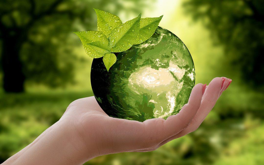 Dussmann Service übernimmt Verantwortung für soziale und ökologische Nachhaltigkeit unter anderem setzt man in der Personalplanung bewusst auf die Erfahrung von Arbeitnehmern 50plus, fördert Frauen mittels Frauenförderungsplan, die Inklusion von Behinderten Arbeitnehmern und Maßnahmen zum Umweltschutz.