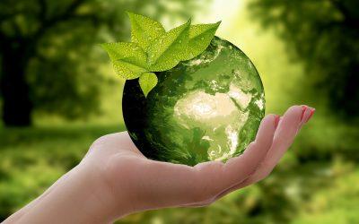 Dussmann Service setzt sich Nachhaltigkeitsziele, um den ökologischen Fußabdruck deutlich zu verkleinern.